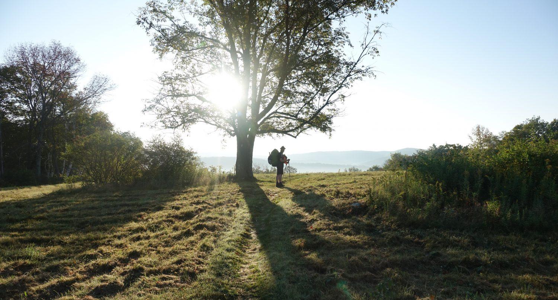 Hatsch the Trail